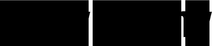 stelya-logo